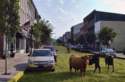 Rural Danville Pennsylvania by Glen Klein