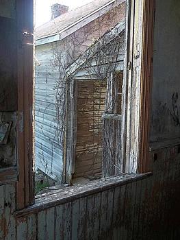 Anne Cameron Cutri - Rural Decay 1