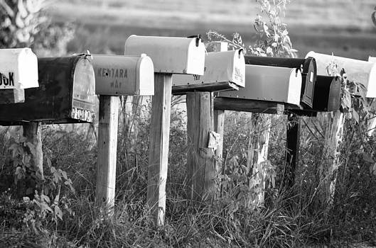 Ronald T Williams - Rural Mail Boxes In Black And White