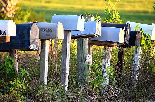Ronald T Williams - Rural Mail Boxes In Color