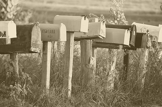 Ronald T Williams - Rural Mail Boxes In Sepia