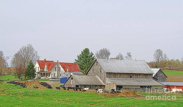 Deborah Benoit - Rural Vermont Farm Scene