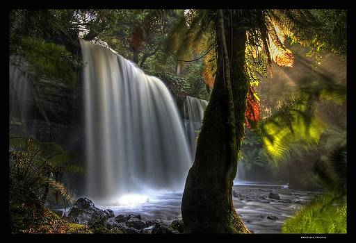Russel Falls by Michael Thoms