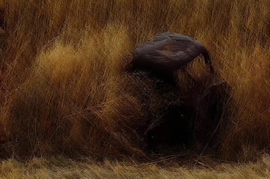 Rust by Robert Hudnall