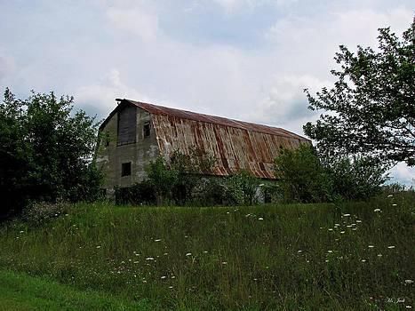 Ms Judi - Rusted Barn Roof