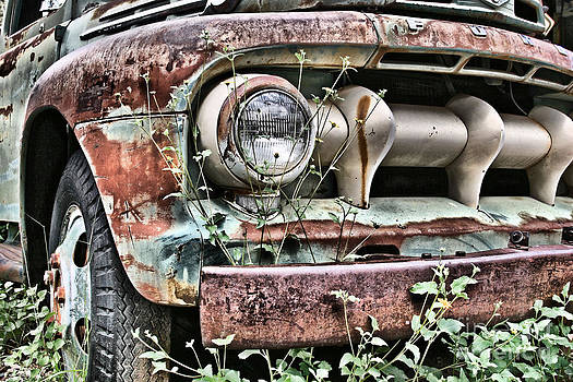 Rusted Ford Truk by Donald Tusa