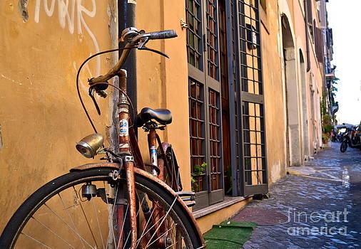 Rustic Bike by Arthur Hofer