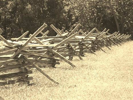 Rustic Fence by Trish Pitts