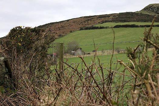 Joseph Doyle - Rustic Irish landscape 2