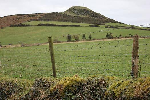 Joseph Doyle - Rustic Irish landscape