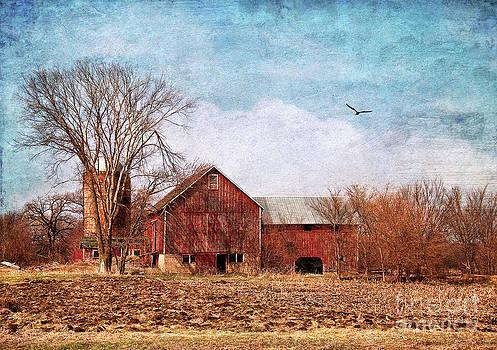 Rustic Old Barn by Maria Aiello