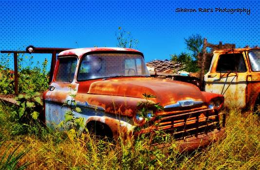 Rustic Reality by Sharon Farris