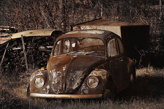 Rusty Bettle by Ferenc Farago