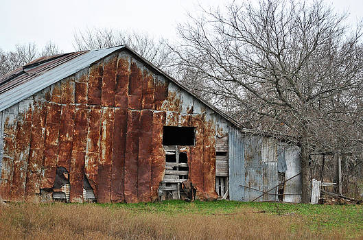 Rusty Old Barn by Lisa Moore