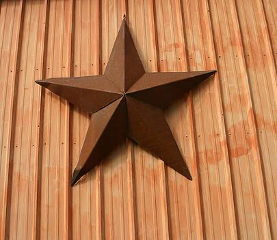 Nina Fosdick - Rusty Star
