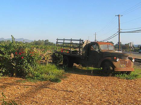Rusty truck in Napa Valley by Leontine Vandermeer