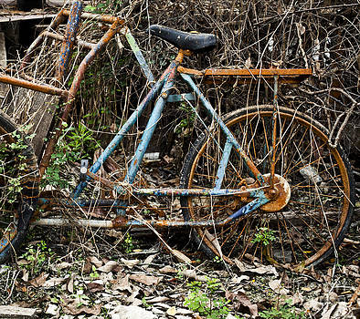Rusty wheel of bicycle by Chavalit Kamolthamanon