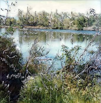 Sacramento River Trail by Gwen Strahan