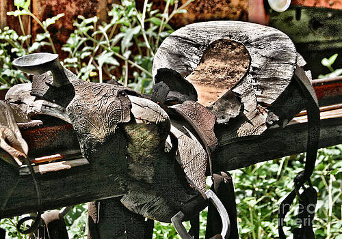 Saddle by Donald Tusa