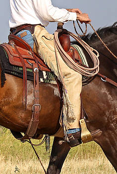Saddle Up by Elizabeth Hart