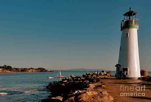 Safe Harbor by David Taylor