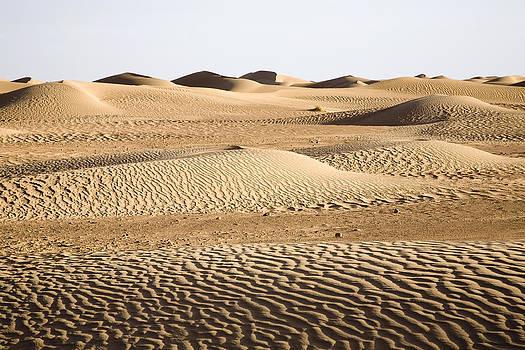 Sahara desert by Frits Selier