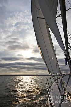 Sailboat Sailing Beneteau 49 Charleston Harbor by Dustin K Ryan