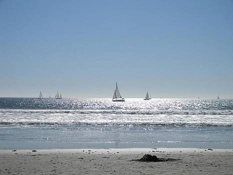 Sailboats at Venice Beach by Eric Barich