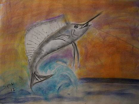 Sailfish On by Spencer  Joyner