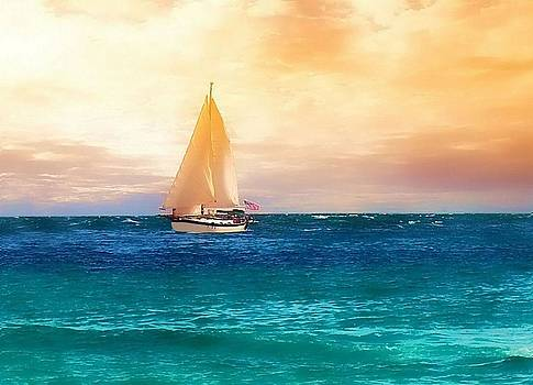 Sailing in the Sunset by Rick Davis