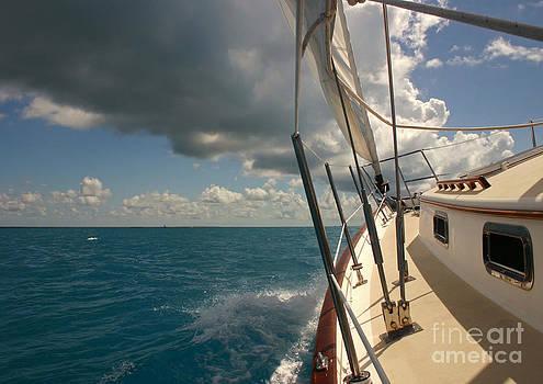 Sailing in the tropics by Matt Tilghman