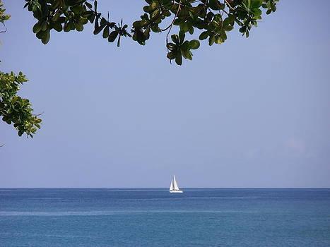 Kimberly Perry - Sailing