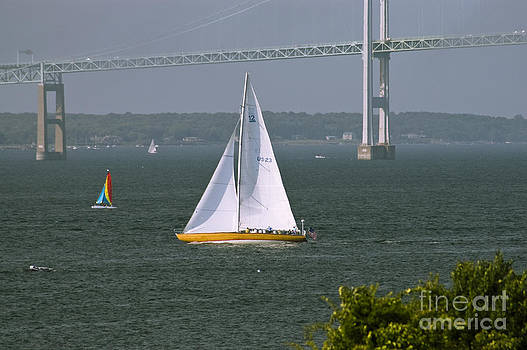 Tim Mulina - Sailing Newport