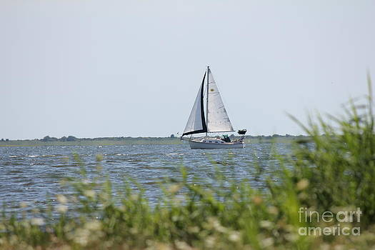 Sailing by Scenesational Photos