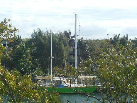 Sailing Soon by Lisa Pedro