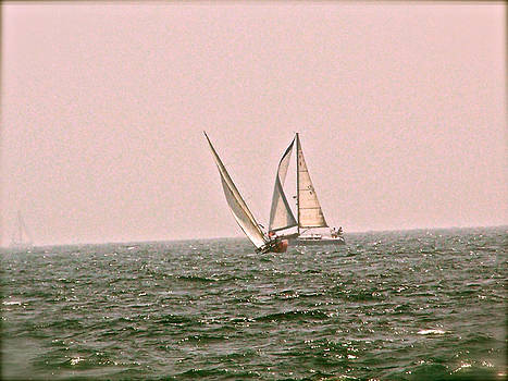 Sails by Amber Hennessey