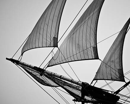 Sails in Black and White by Peggie Strachan