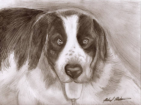 Saint Bernard by Michael Mestas