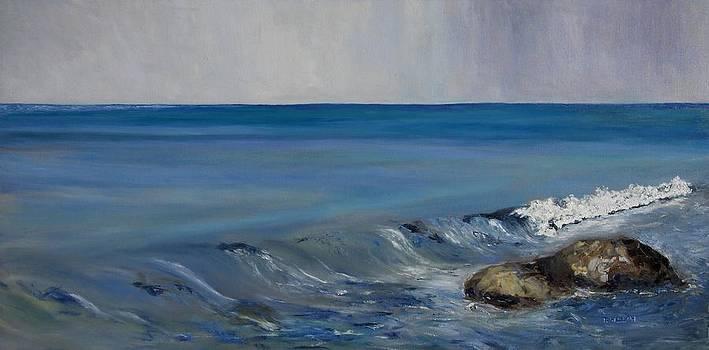 Salish Sea four by Terrill Welch