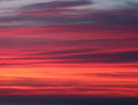 Cathie Douglas - Salmon Sunset