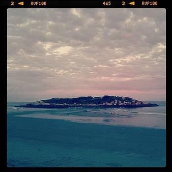 Salt Island Dusk by Tricia ONeill