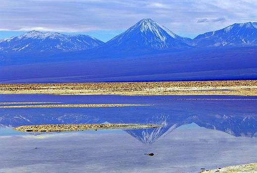 Salt lake at the Atacama Desert Chile by Sandra Lira