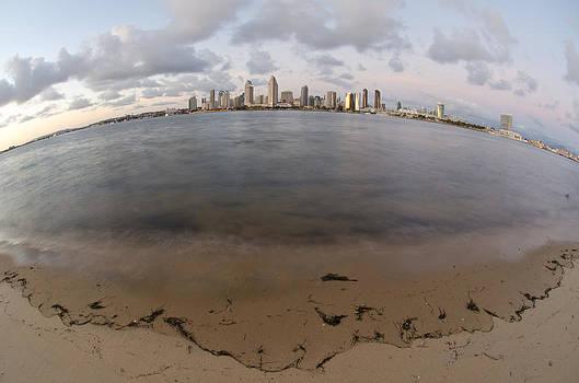 Margaret Pitcher - San Diego Bay