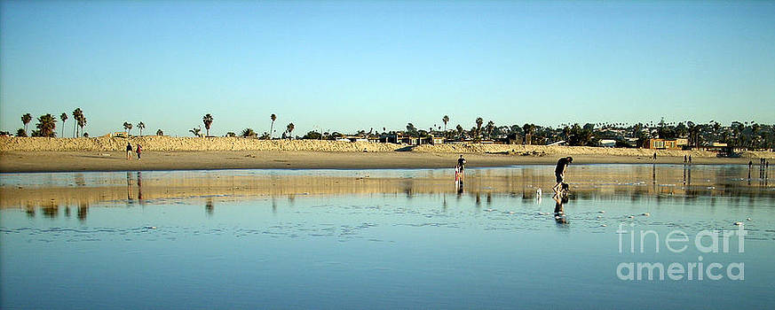 San Diego Beach by Amanda Aro