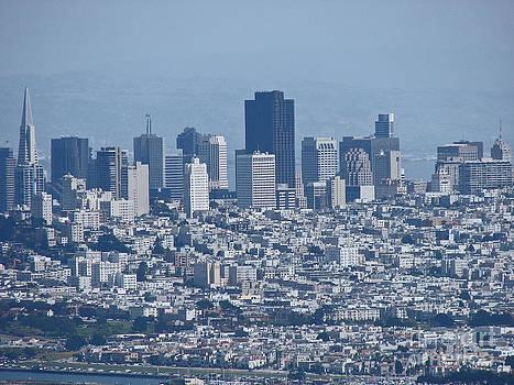 San Francisco by Suze Taylor