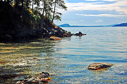 San Juan Islands by Randall Templeton