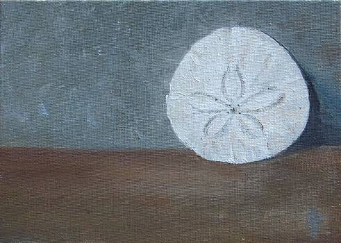 Sand Dollar by Joyce Brandon