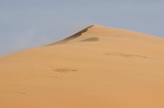Heather Applegate - Sand Dune
