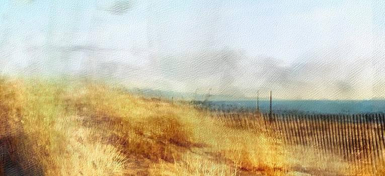 Sand Dune by Scott Smith