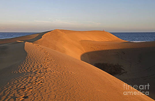 Sand Dune Sunset  by Urban Shooters